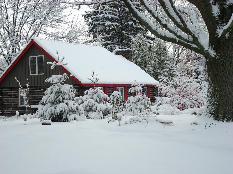 Higman Park Cabin - Winter View