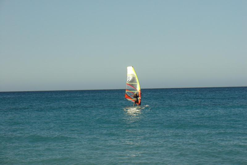 Windsurfing in front of the building, there is also surfing, swimming and paddle boarding