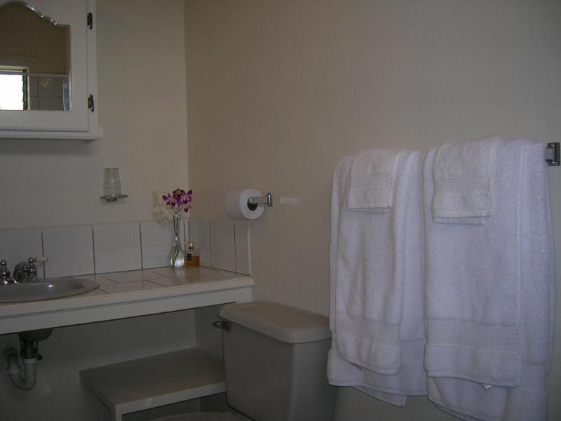 Gladstone Ensuite Bathroom
