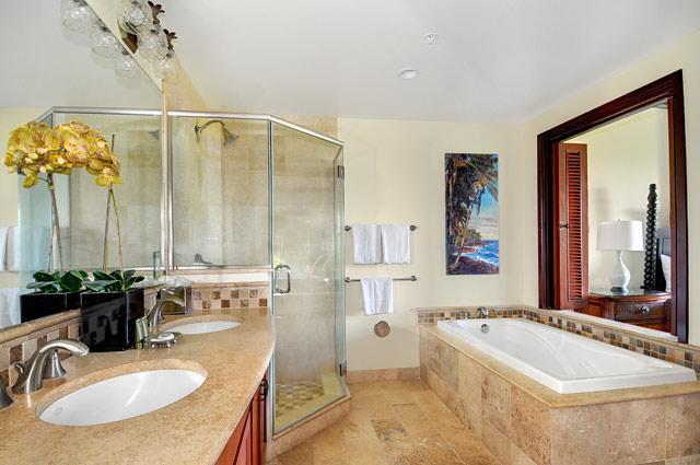 C305 Master Bathroom