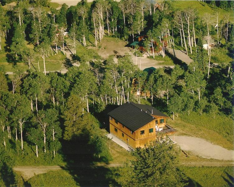 Moose Crossing from the Air
