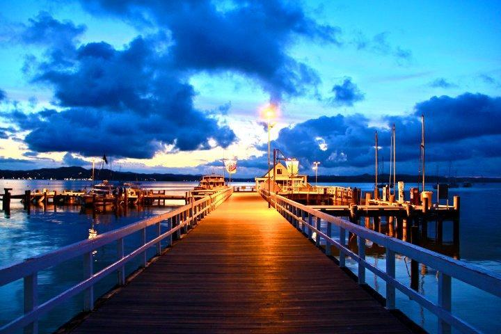 Watch the wharf comings and goings from the property.