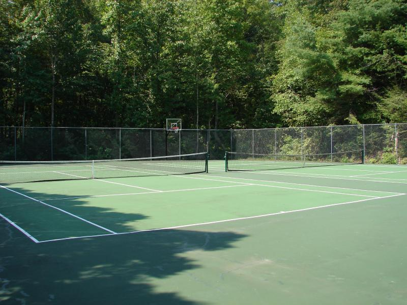 Our community tennis court invites you to have a game.