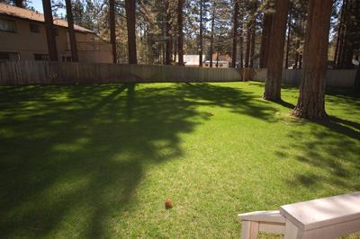 Large Common Yard