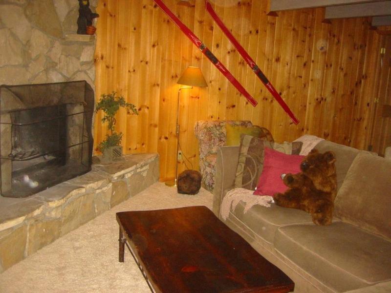 572 Douglas Fireplace.JPG