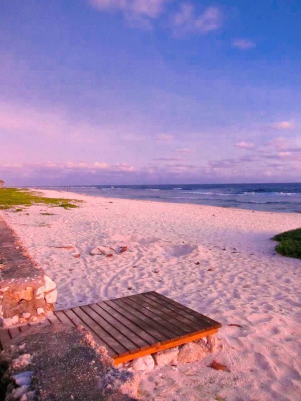 Nuestra puerta real y playa. Ideal para paseos al atardecer