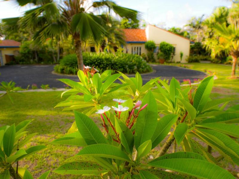 Amplio jardín Tropical