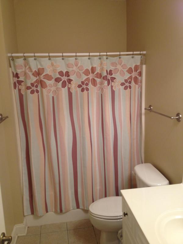 Guest bedroom bathroom #3
