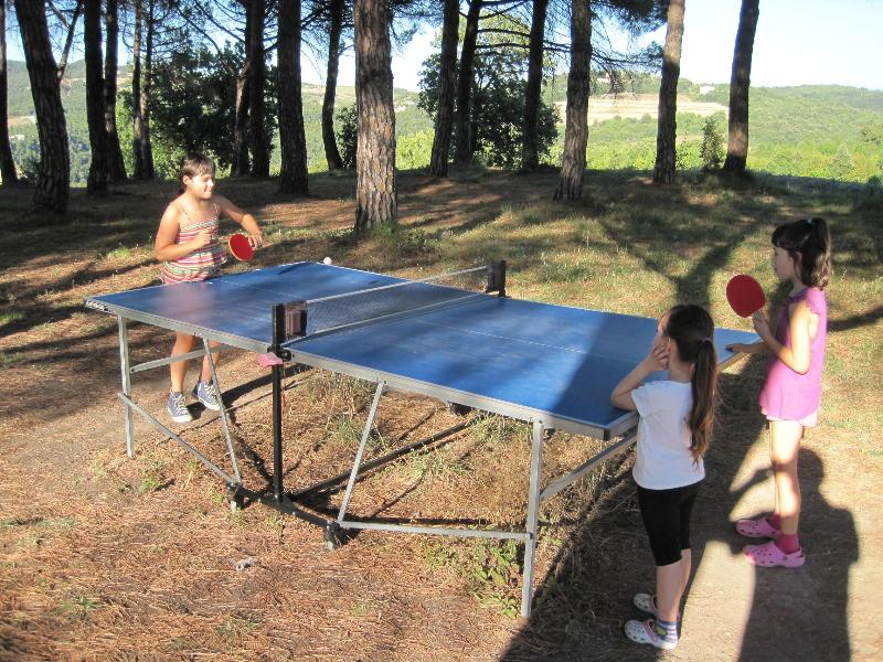 Tennis table (also for adults a lot of fun!!)