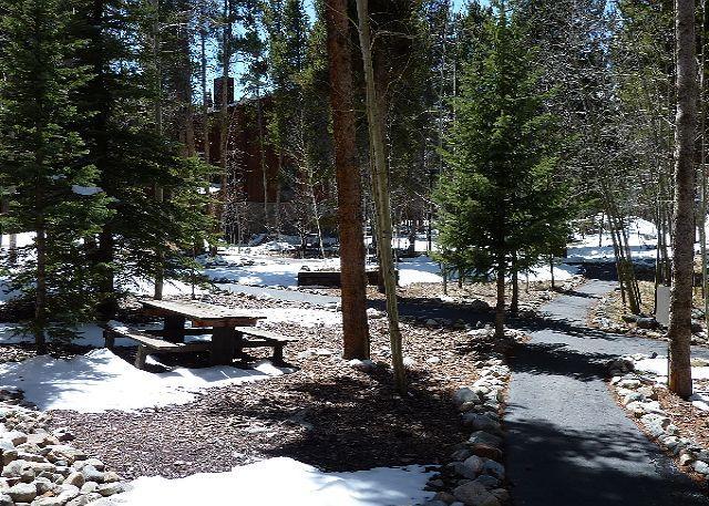 Columbine Condo Complex Grounds Breckenridge Hébergement Condo Renta