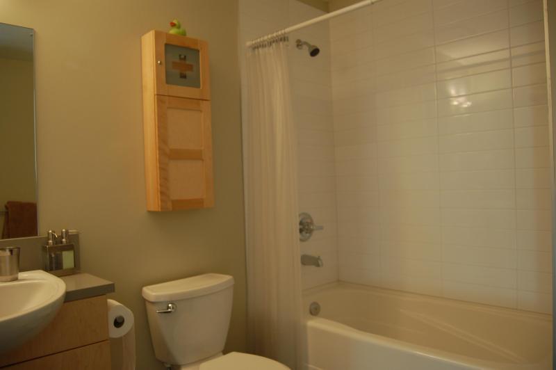 Bathroom With Shower, Tub And Heated Towel Rack