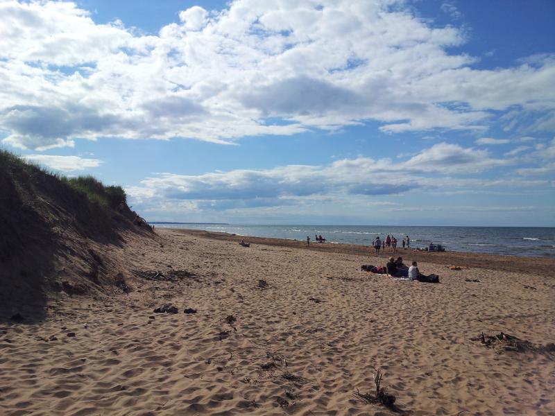 Beach beside cottage