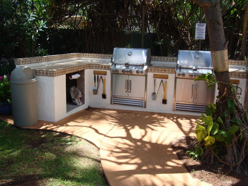 Our barbecue with fresh spice garden next to it for you to use