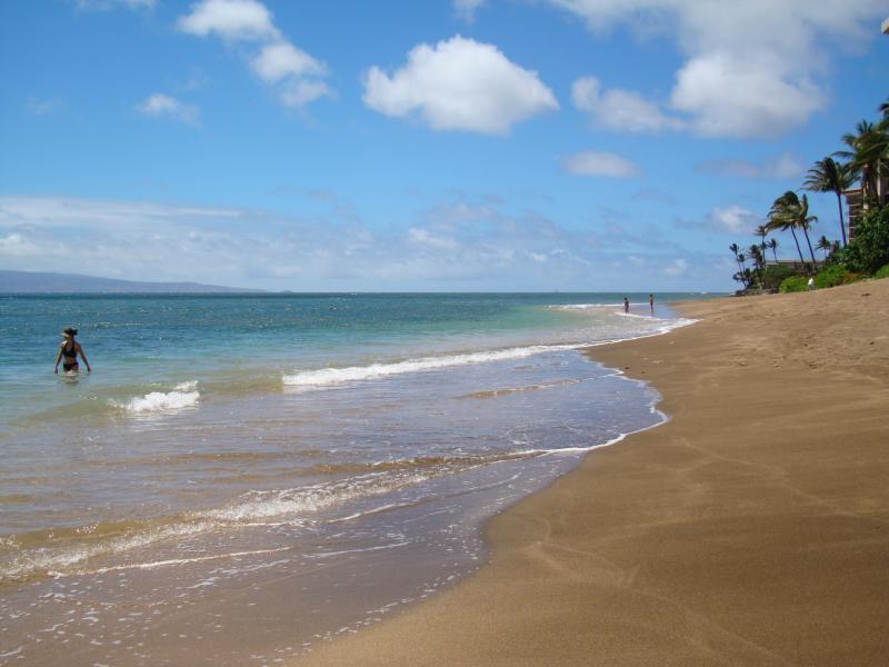 Our north beach!