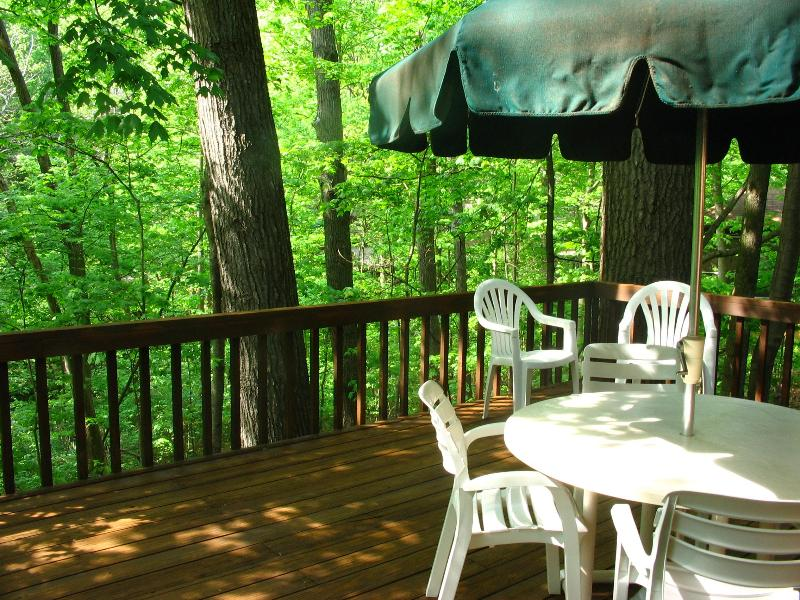 Private deck overlooking the woods