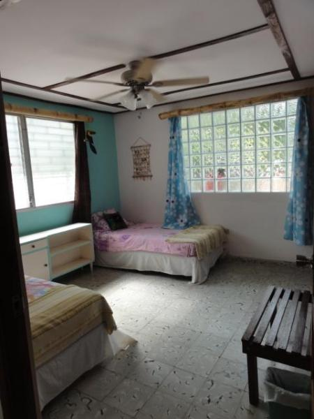 March 2011 update - new drapes and cool HUGE BAMBOO (+ new windows) in both bedrooms...