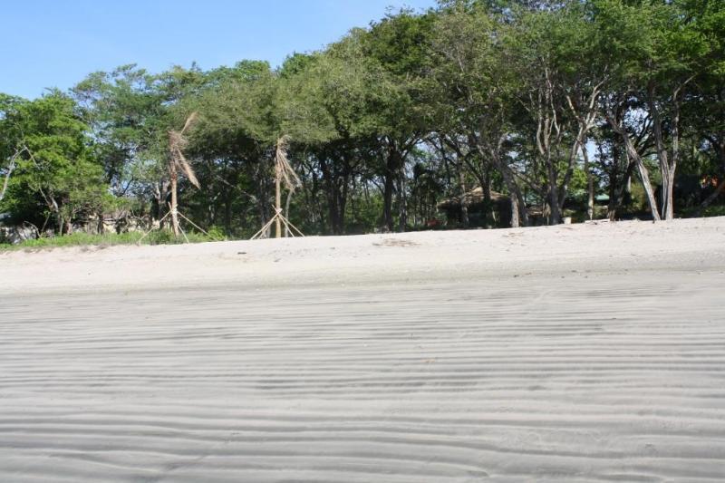 Beach Club Beach