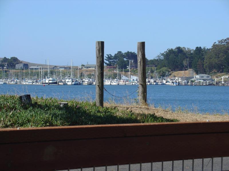 Marina View från hamnen Cutie