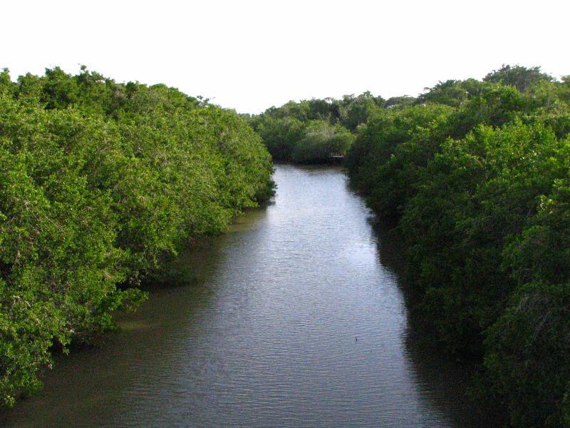 Explorar nas proximidades de canais e estuários