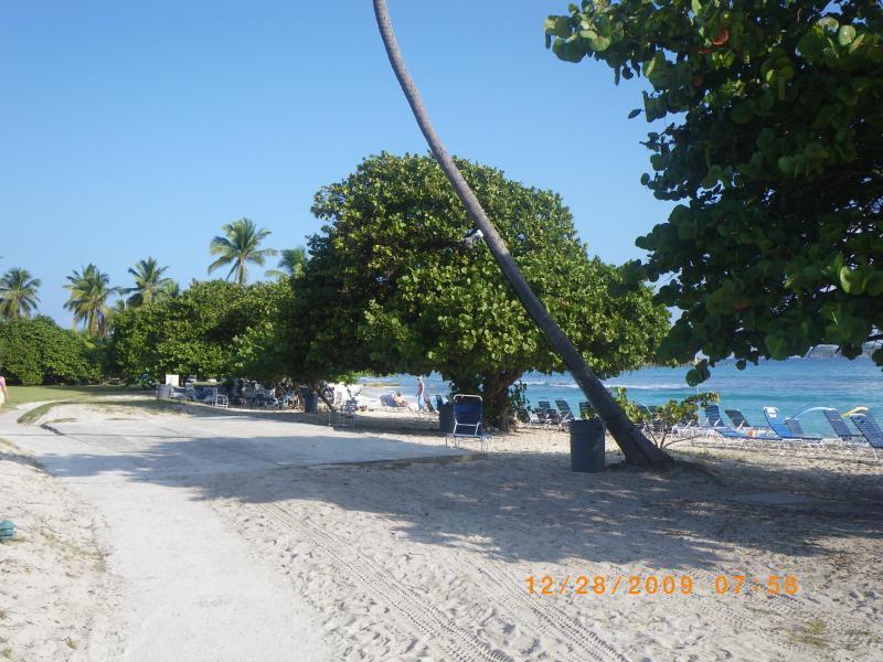 A walk along our beach