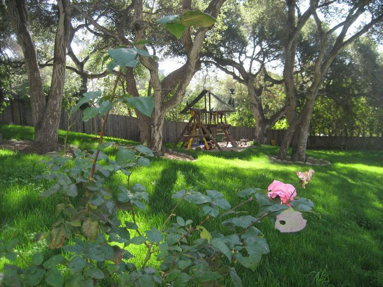 beautiful landscaped grounds with playset