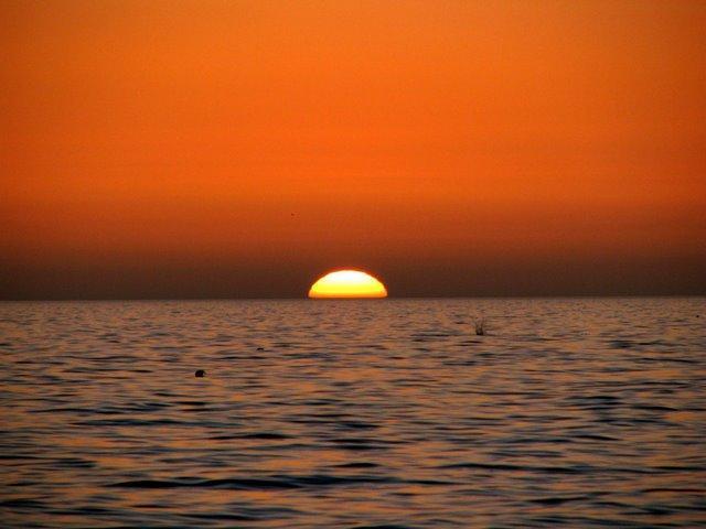 Manasota Beach - tramonto sul Golfo.