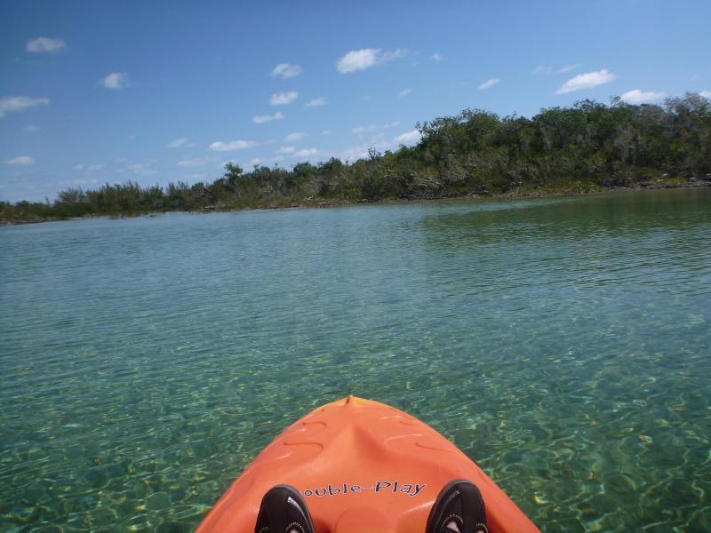Kayak the creeks and inlets