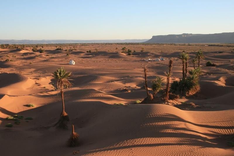 Dune top view of Sahara Safari Camp