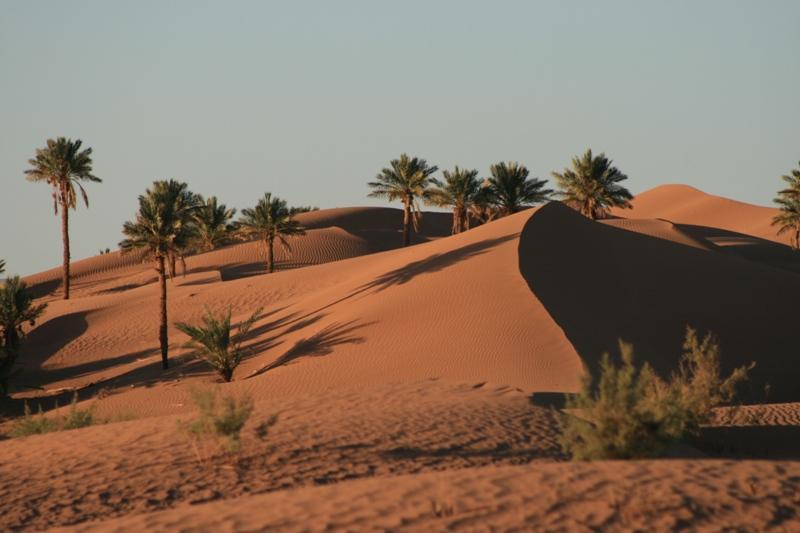 Sunrise over dunes behind camp