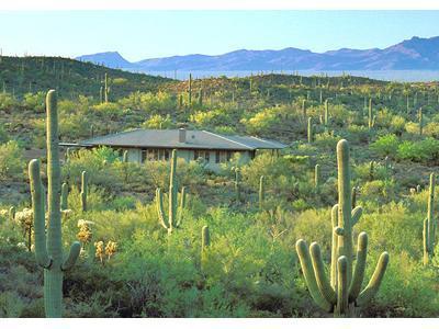 Tucson Retreat in Desert Wildlife Sanctuary