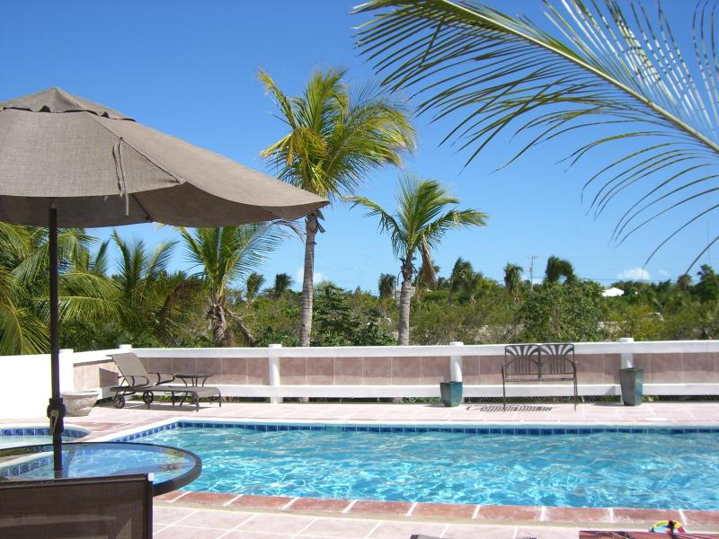 Shared pool and sunbed area