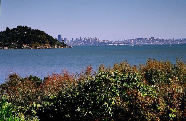 View of San Francisco and the Bay