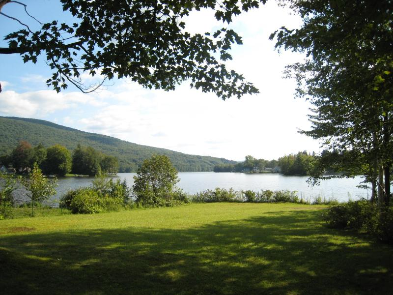 view of the lake from the lawn in summer