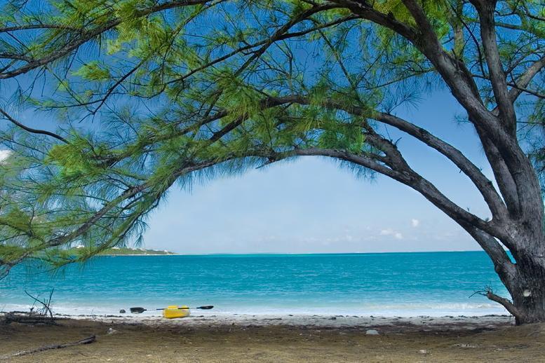 Walk or kayak to Jolly Hall Beach