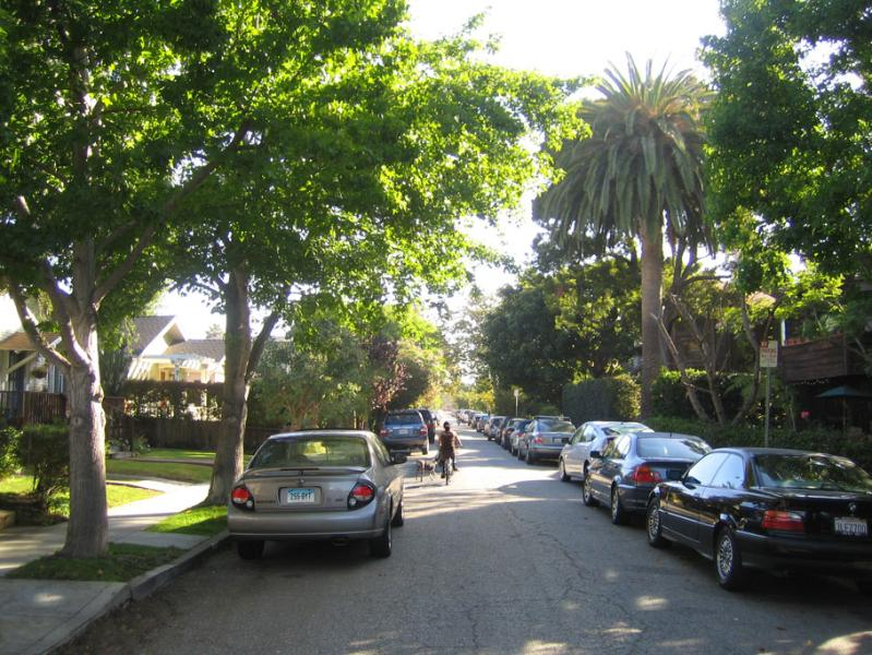 Our pretty Tree-lined One Way Street