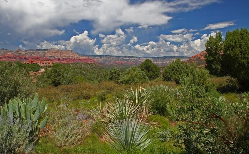 The red rock vistas are magnificent at any time of year--after a summer monsoon storm...
