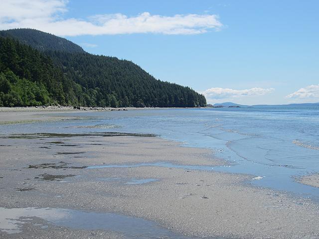 Low tide in front of Lummi Beach Haven