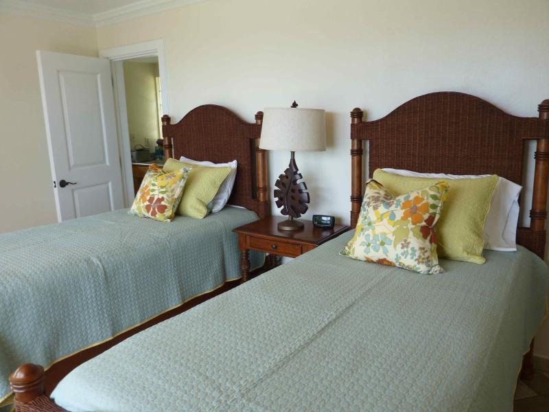 The lower bedroom has 2 twin extra long beds