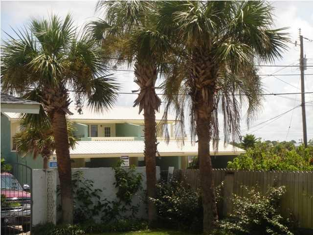 Florida hermosas palmeras