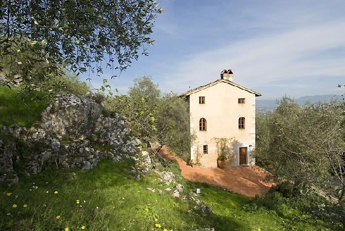 Villa Oliva Holiday house near Lucca, holiday rental in Lucca