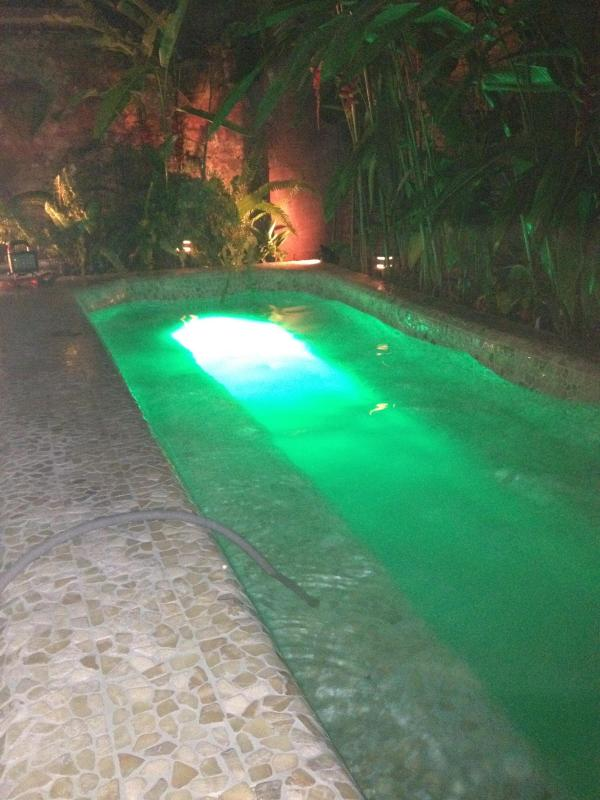 Jacuzzi/Dipping pool