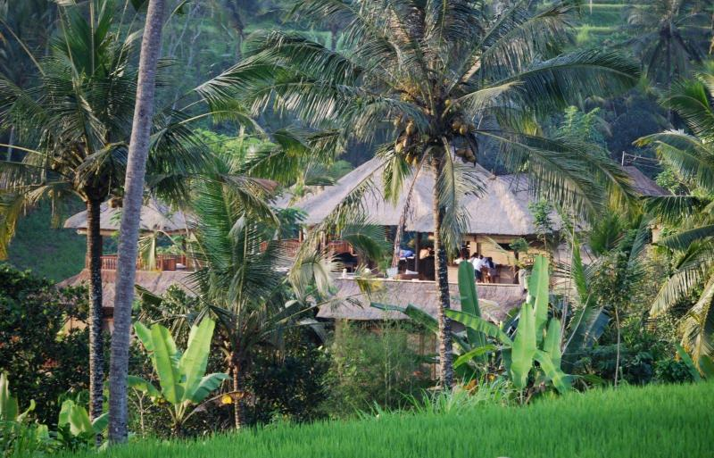 View of Villa Santai from the Ancient Rice Paddies