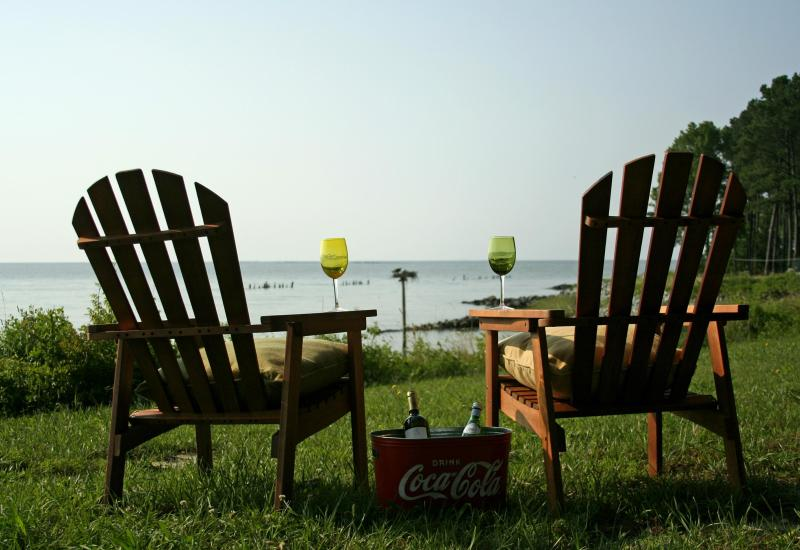 Chardonnay Overlooking the Bay