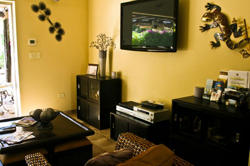 Livinga Area with Flat Screen