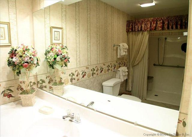 Master bath offers a walk in shower.
