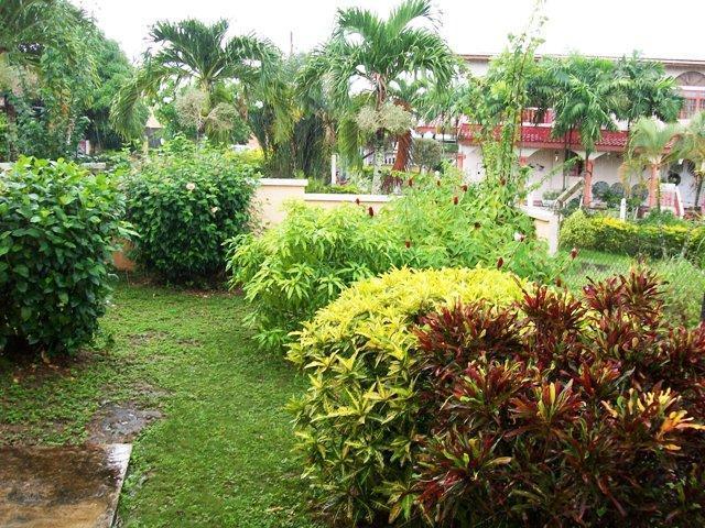 Frente jardín de flores