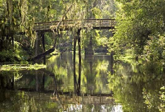 Suspension Bridge, Hillsborough River State Park developed by CCC in 1930's is just 20 miles