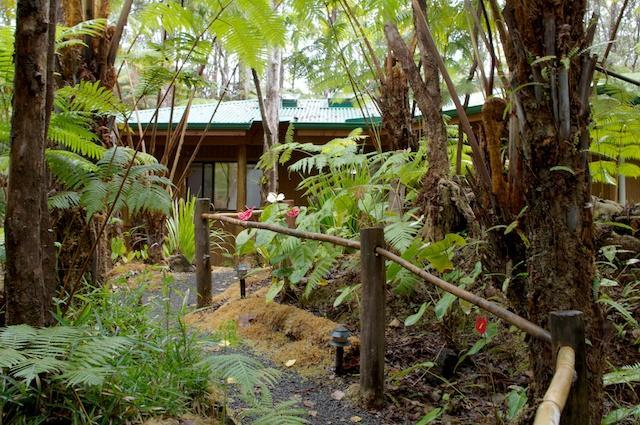Stroll the garden paths under the giant Hapu'u  tree ferns and towering Ohia trees.