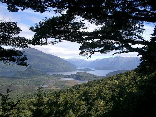 Lake Manapouri from Scenic Circle Track