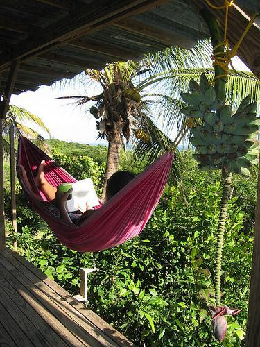 Hammocks are waiting for you